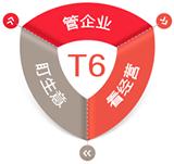 用(yong)友T6